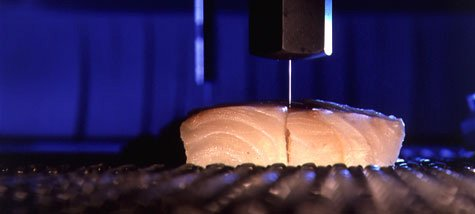 Food Water Jet Cutting
